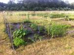 Sandywoods Community Garden