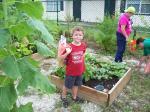 Pine Manor Community Garden
