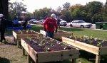 Chicago-Lathrop Planter Boxes