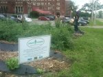 Community picks vegestables