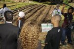 Los Angeles- Atlantic Records' T.I. and Urban Farming group