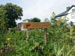 Newtown Community Garden