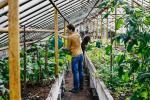 Vilnius Urban Farm